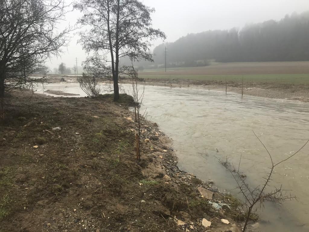 Biberrenaturierung Hochwasser Februar 2021